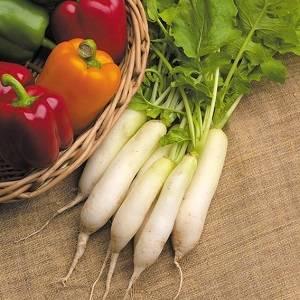 Seeds | Organic Gardening Catalogue