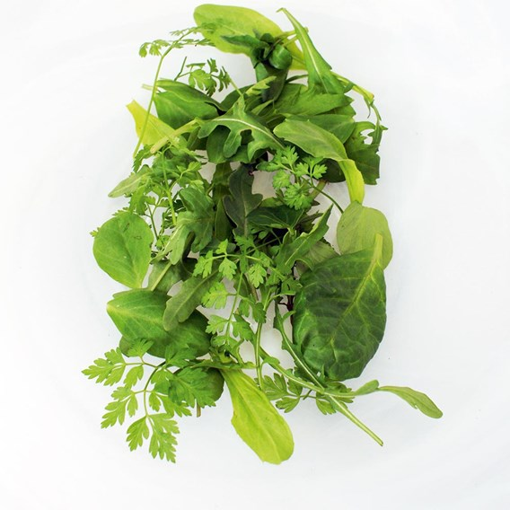Leaf salad French