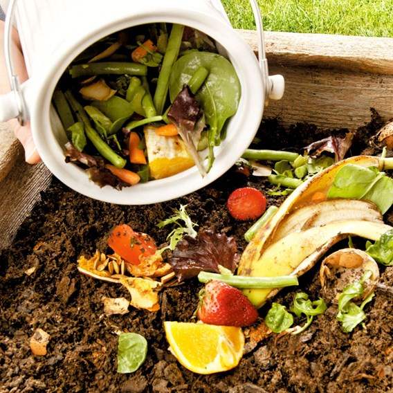 Eco Compost Pail