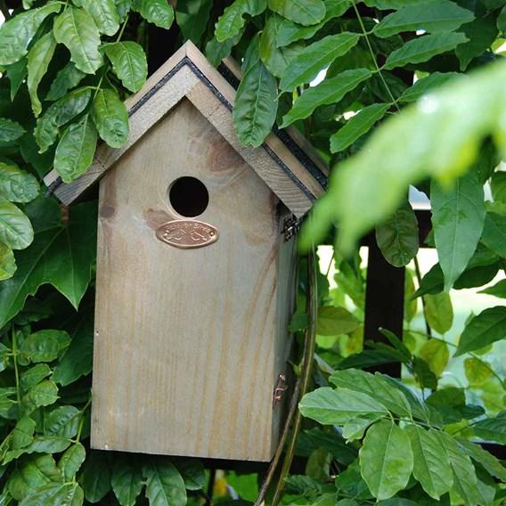 Blue Tit Bird Box - Bitumen Roof