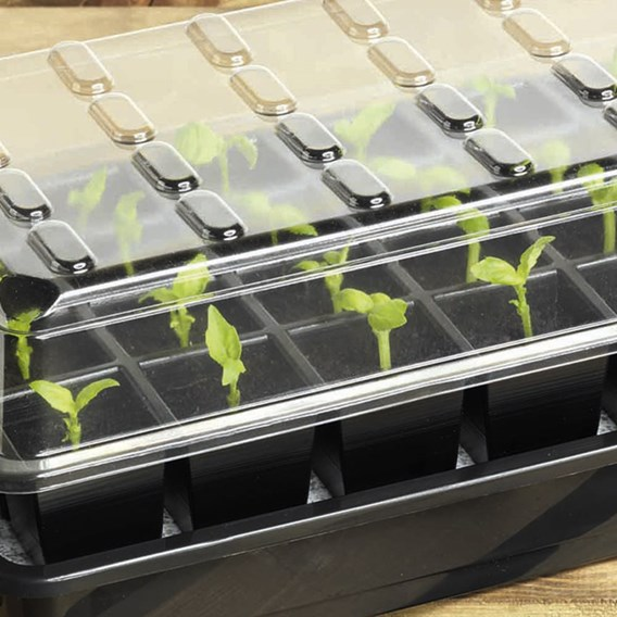 24 Cell Self-Watering Seed Success Kit (2 Kits)