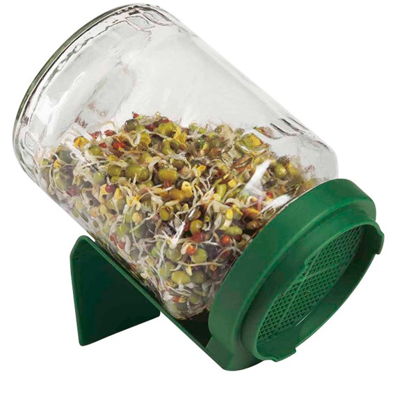 Germinator Jar (3 Pack)