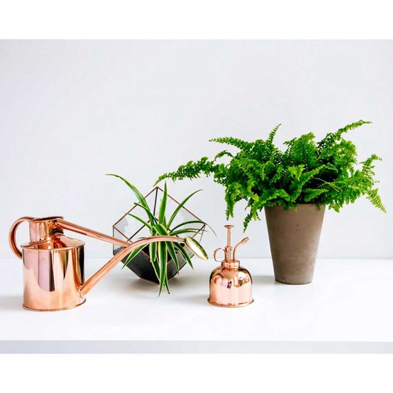 Indoor Copper Watering Can and mister