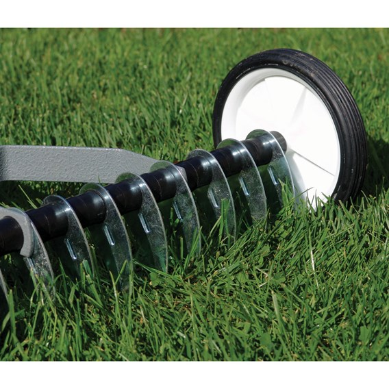 Lawn Scarifier And Lawn Seed