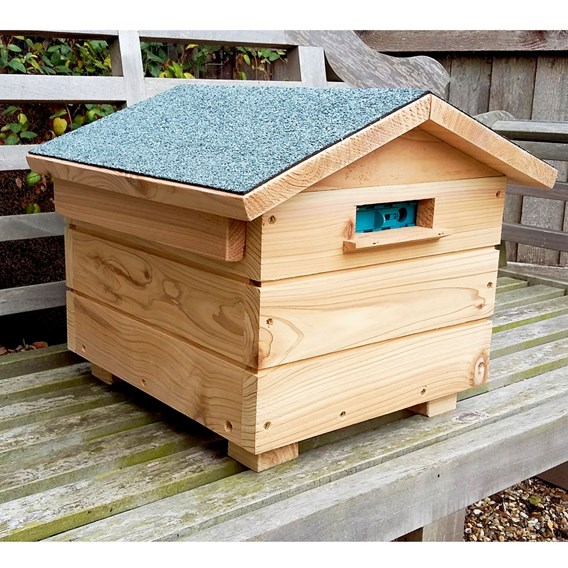 Bumblebee Villa and Colony