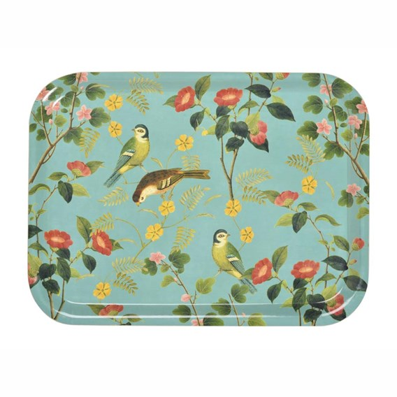 Tray Flora and fauna Collection