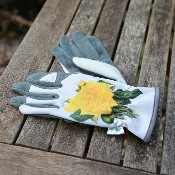 RHS Hampton Glove