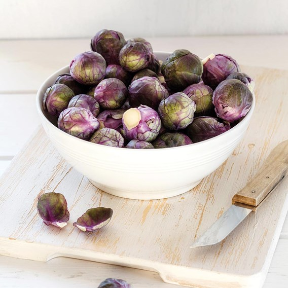 Brussels Sprouts Rubine