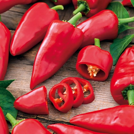 Pepper Sweet - Pimiento Salsa