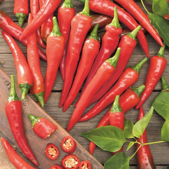 Chilli Pepper Seeds - De Cayenne