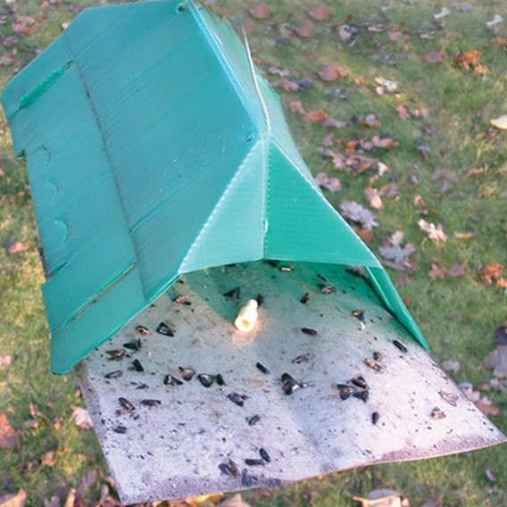 Leek Moth Trap - Online Leek Moth Trap