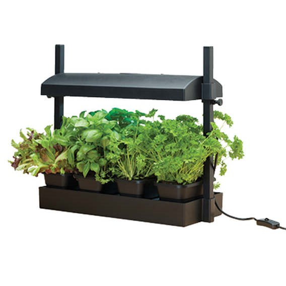 Micro Grow Light Garden  (Black)