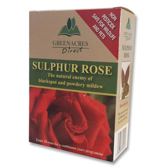 Sulphur Rose  250G
