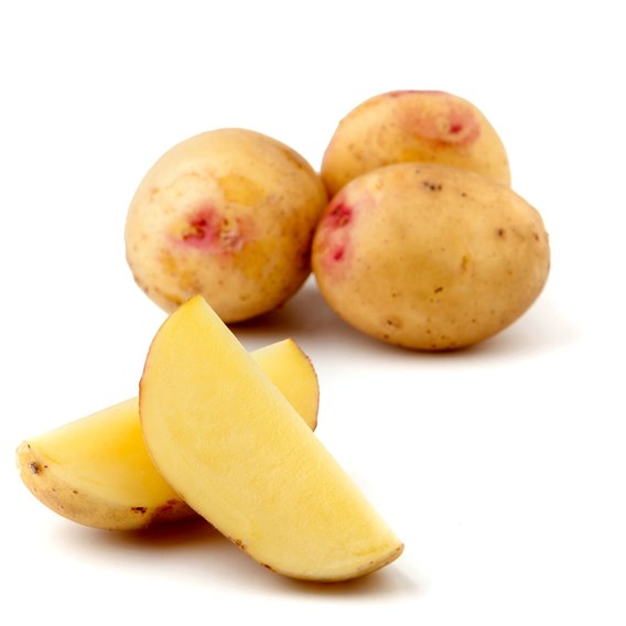 Potato Seed Organic Carollus 1kg
