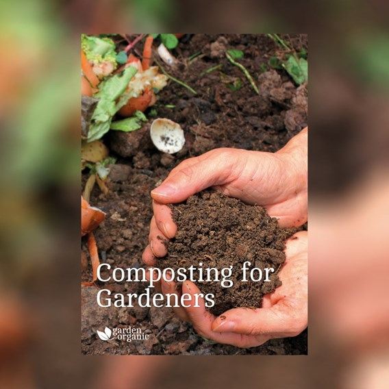 Step By Step Guide - Composting