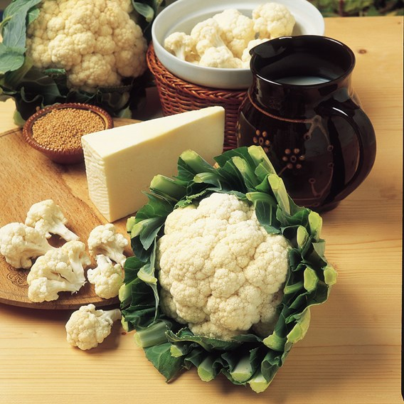 Cauliflower All Year Round (10) Organic