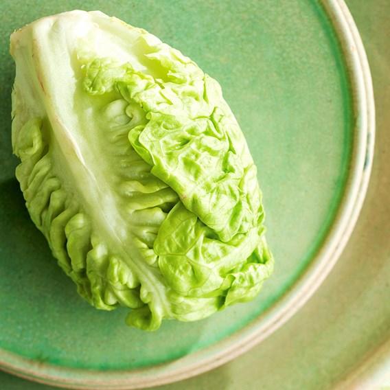 Lettuce Little Gem 10 Plants - Organic