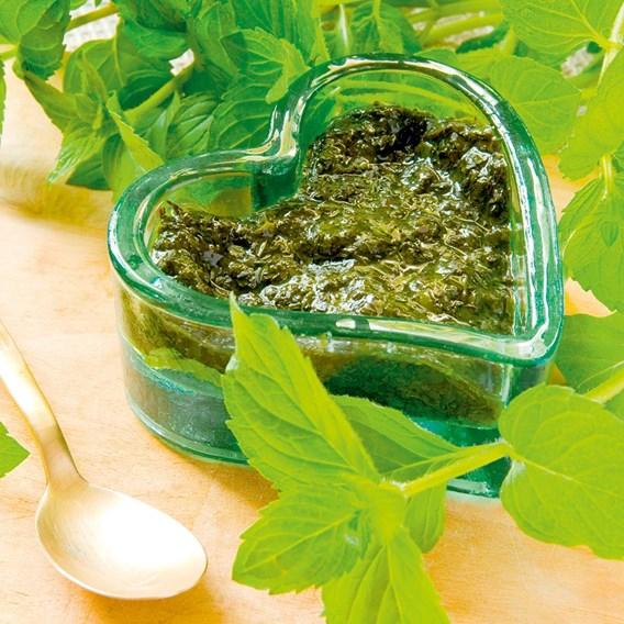 Mint Garden 3 Plants - Organic