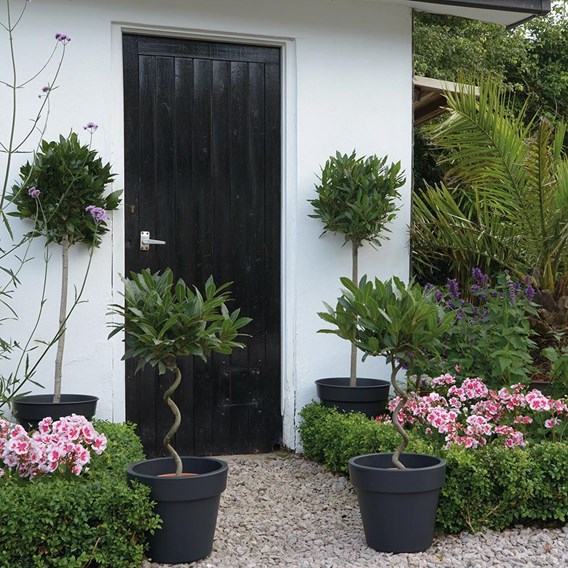 Dark Grey Planters