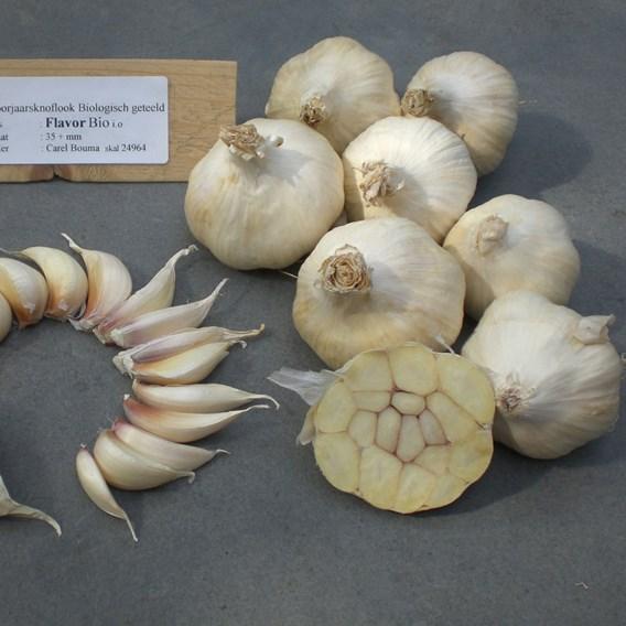 Garlic (Organic) - Flavor
