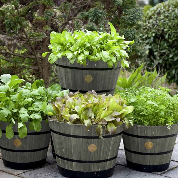 Wooden Barrel Planter - Grey Wash
