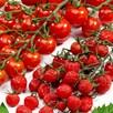 Tomato Grafted Sugar Plum Raisin (2) + 15m Twool Garden Twine
