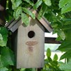 Wren Bird Box - Bitumen Roof