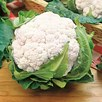 Cauliflower Snowball
