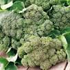 Broccoli seeds - Waltham
