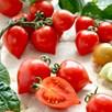 Tomato Seeds - Dora F1