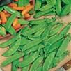 Pea Sugar Snap (10) Organic
