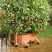 Earthbox 56 Litre Planter Support Frame Terracotta