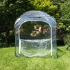 Poly Pop-Up Cages H 1.35M X 1.25 M2
