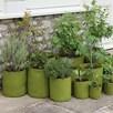 Vigoroot Pots And Planters Vegetable Planter 30Cm X H40Cm