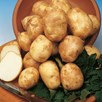 Seed Potatoes Pentland Javelin 1kg