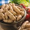 Seed Potato Anya 1kg