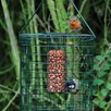 Kernel Squirrel Resistant Nut Feeder