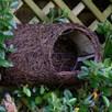 Simon King Robin Roost / Nest