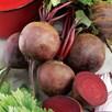 Beetroot Detroit (10)  Organic