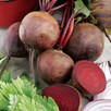 Beetroot (Non Organic) Seeds - Boltardy